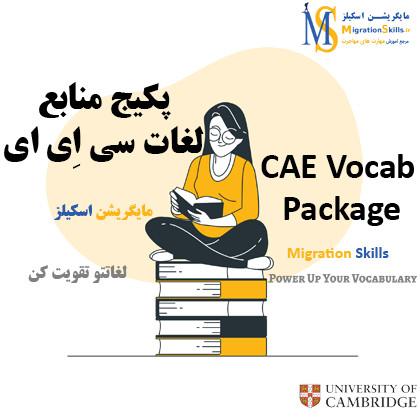 لغات CAE